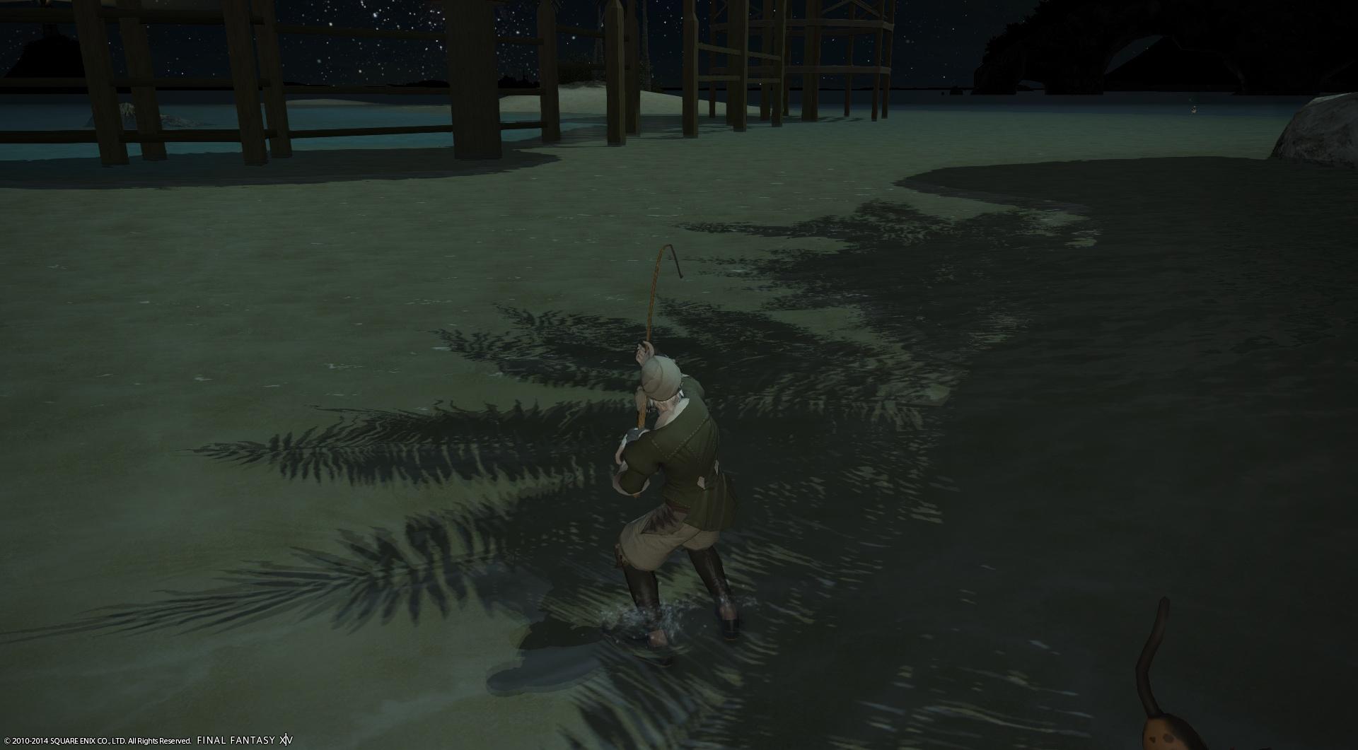 浜辺での夜釣り